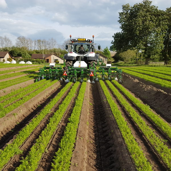 Field with Band and Hooded Sprayer