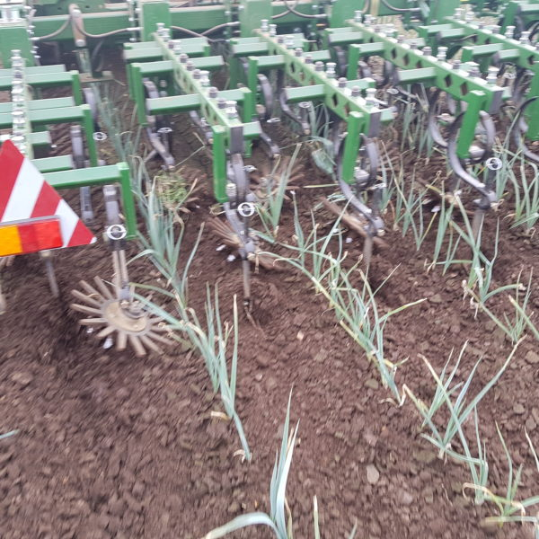 Garford InterRow - Leeks